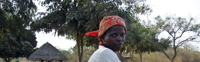 Filomena Maio, que teve o casamento rompido devido a demoras nas viagens de busca de água, agora sobrevive vendendo em Chitobe, a sede distrital, adiantando que divide os ganhos para sustentar três filhos da união e pagar as suas despesas de saúde e educação. A maioria das mulheres de Mavissanga, província de Manica, centro de Moçambique, precisa de pedalar até 70 quilómetros, ida e volta, para encontrar água potável, uma viagem que demora em média nove horas e que tem custado vários divórcios. O abastecimento de água potável só chega a cerca de 36, 6% da população do distrito de Machaze (130, 528 habitantes), segundo dados do Programa Nacional de Abastecimento de Água e Saneamento Rural (Pronasar). Moçambique, 25 de outubro de 2015. (ACOMPANHA TEXTO). ANDRÉ CATUEIRA/LUSA