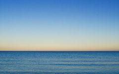 Língua-mar