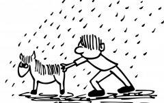 Episódio 77 – tirar o cavalinho da chuva