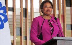 """Futura secretária executiva diz que CPLP tem """"enorme potencial"""""""