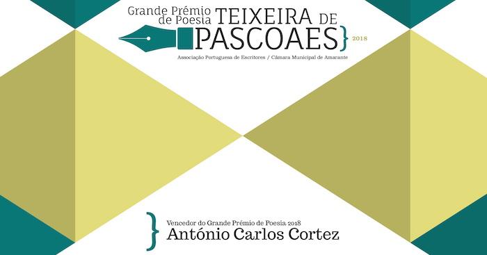 Grande Prémio de Poesia Teixeira de Pascoaes APE/C.M. de Amarante