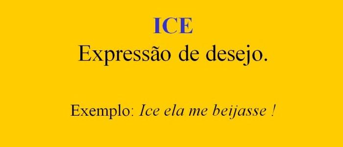 Dicionário Inglês, Madeirense, Português (para ler com humor)