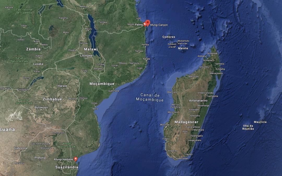 Moçambique/Ataques: Total retira todo o pessoal do projeto de gás de Cabo Delgado